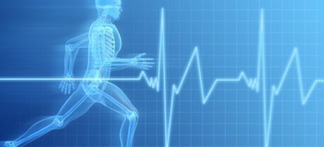 Wie kann ich mein Herz-Kreislauf-System stärken?