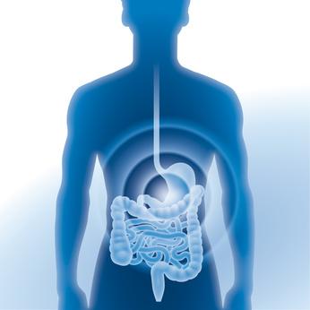 Speiseröhrenentzündung durch Reflux: Refluxösophagitis