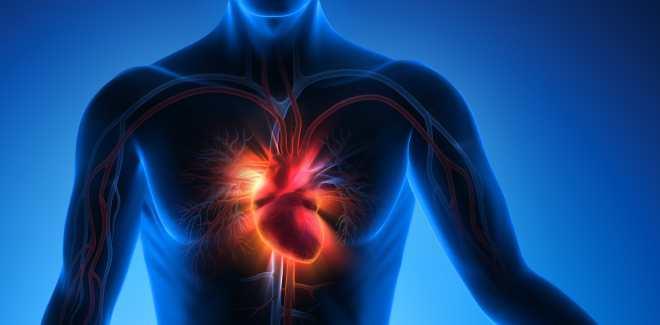 Rücken auf dem herzstolpern beim liegen Herzrhythmusstörungen