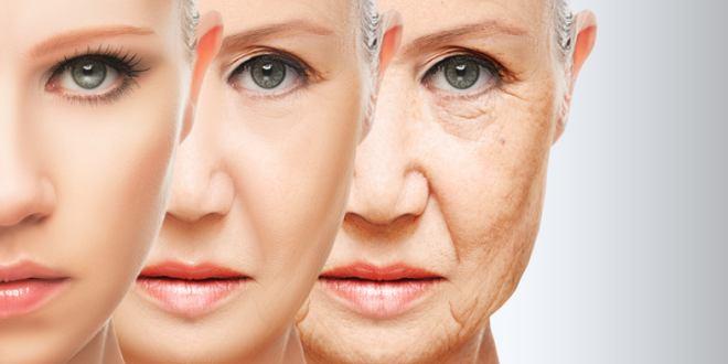 Alterung Stoppen