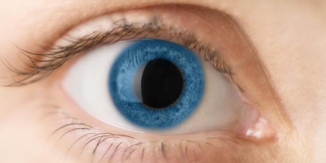 Pupillen vergrößerte An diesen