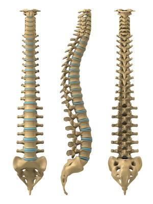 Die starken Rückenschmerz zu welchem Arzt zu wenden, sich