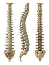 Quali farmaci uccidono il mal di schiena